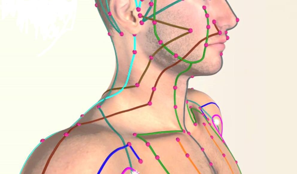 Meridianen: de onzichtbare energiebanen in jouw lichaam