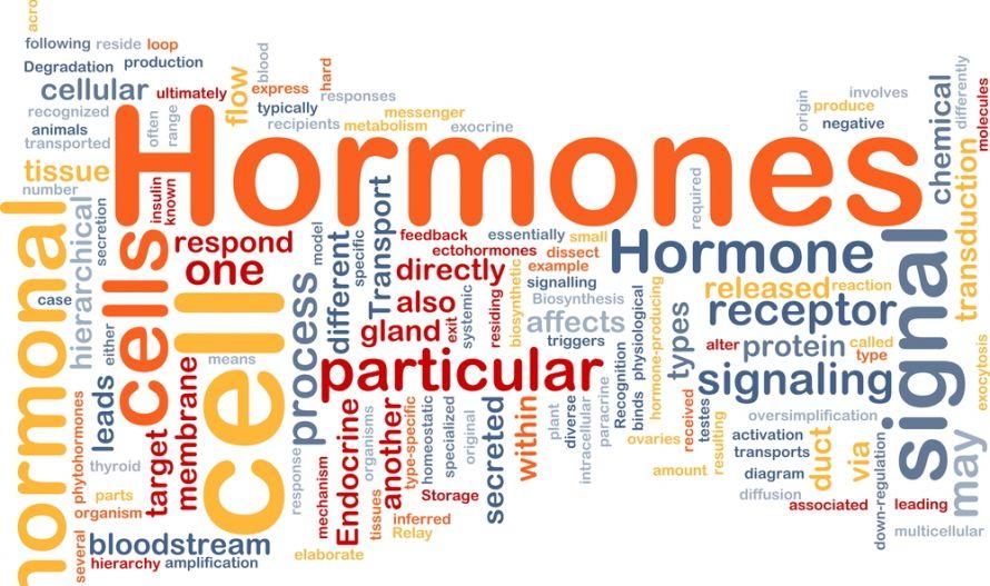 Wat zijn HORMONEN- DISBALANS hormonen- Wat te doen?